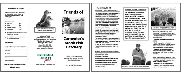 Brochure for Friends of Carpenter's Brook