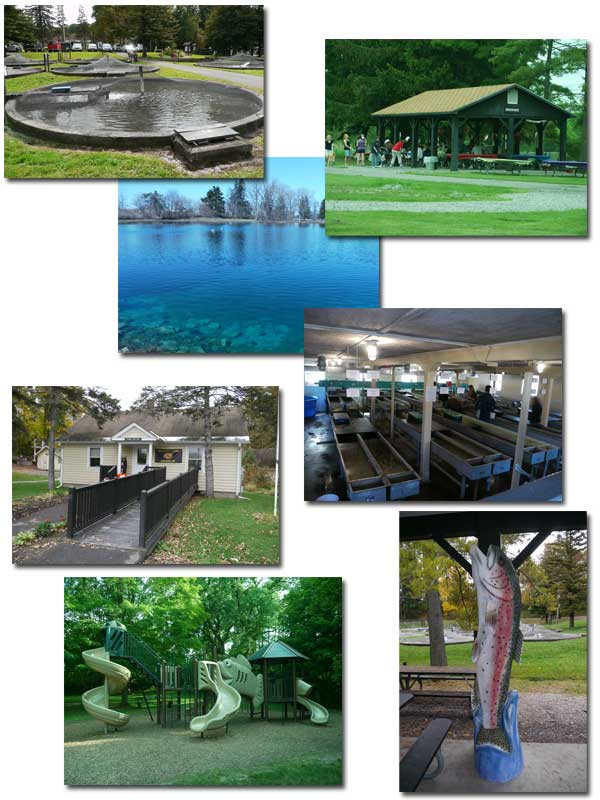Collage of the Pond, Office, Fish Carving, Fish Raceways, and Playground