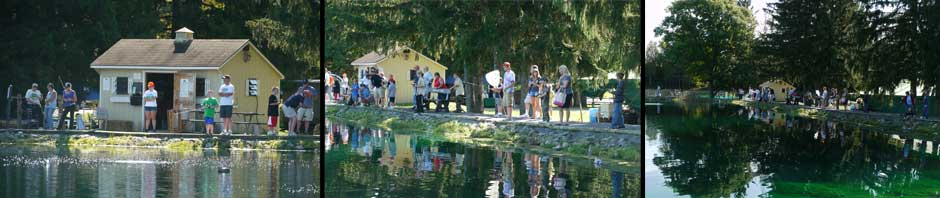The Time Out To Fish Pond
